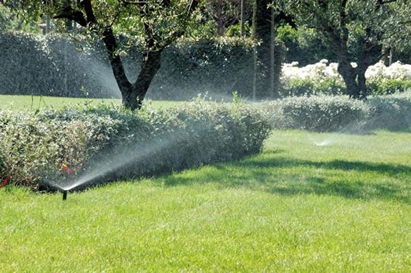 Alfombra de c sped verde cuidados y riego cesped riego for Alfombra verde para jardin