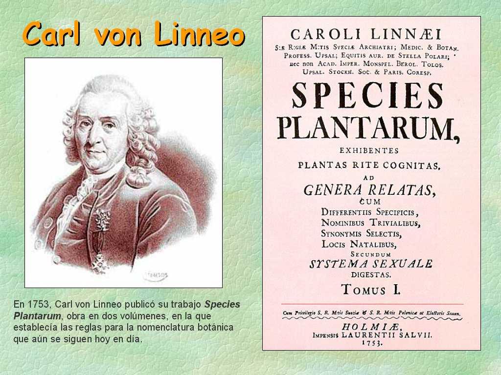 El verdadero nombre de las plantas: nomenclatura binómica en botánica
