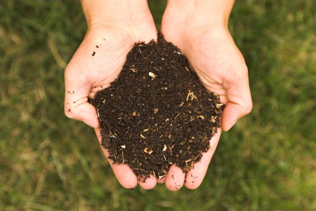 Abonos y fertilizantes ecológicos para tu jardín