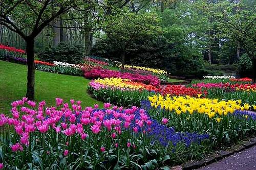 C mo armar tu jard n en verano dise o jardin flores for Armado de jardines