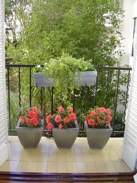 Consejos para cuidar las plantas y administrar riego durante las vacaciones