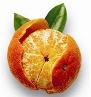 Mandarina necesidades para el cultivo clima suelo abono riego
