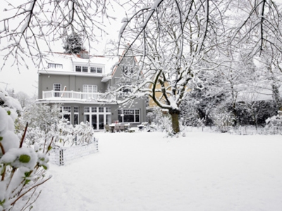 Protege tus plantas del frío: árboles, hortalizas, grandes jardines