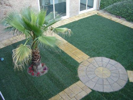 Palmeras el toque tropical para jardines parques o for Iluminacion para palmeras