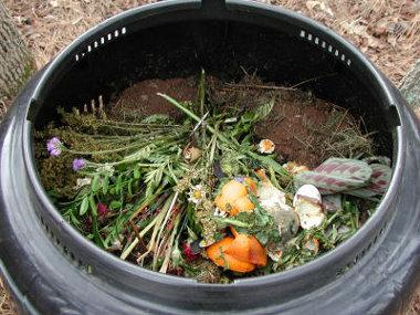 Cómo elaborar compost: ingredientes, proceso y utilización