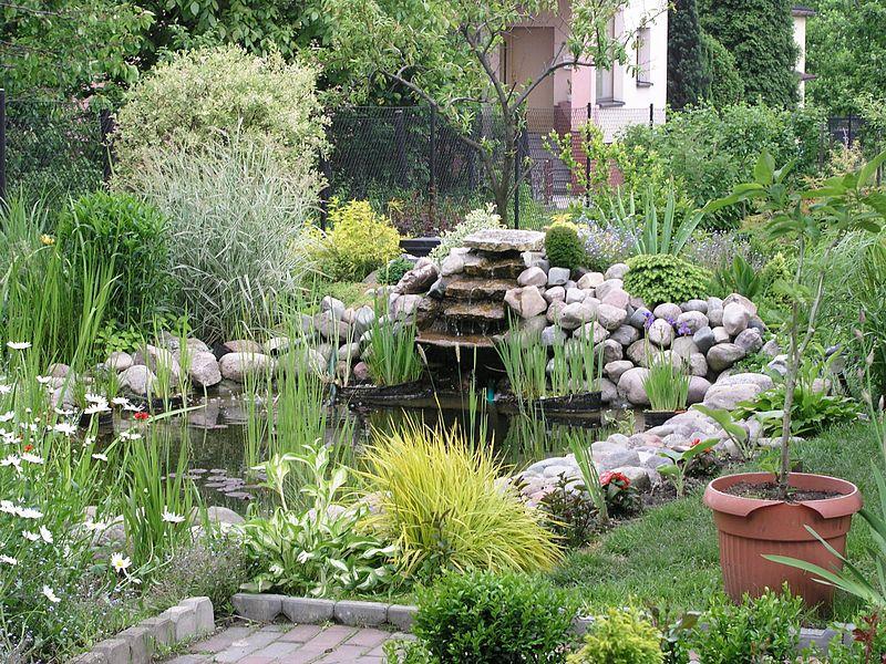 cmo armar un estanque