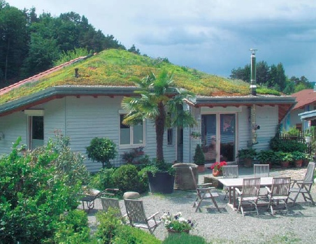 green_roof_1