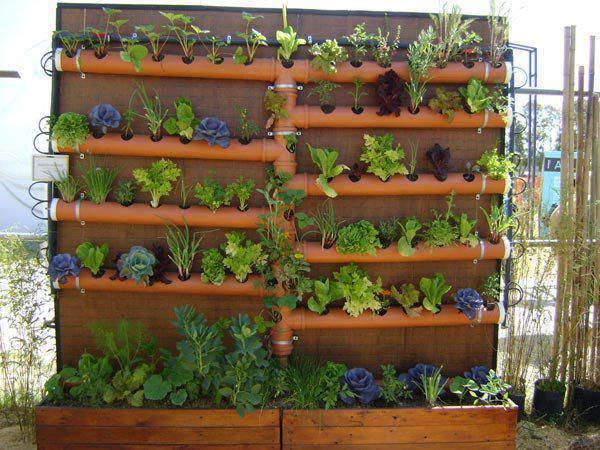 Huertas urbanas y verticales: Cómo armarlas, espacios y materiales