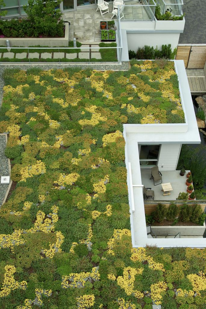 Foto: Green Roofs Australasia