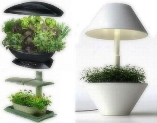 ideas_nano_garden