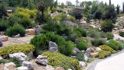 El diccionario del jardinero herramientas jardineria Plantas jardin mediterraneo