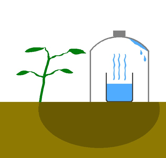 Cómo armar un sistema de riego por goteo solar