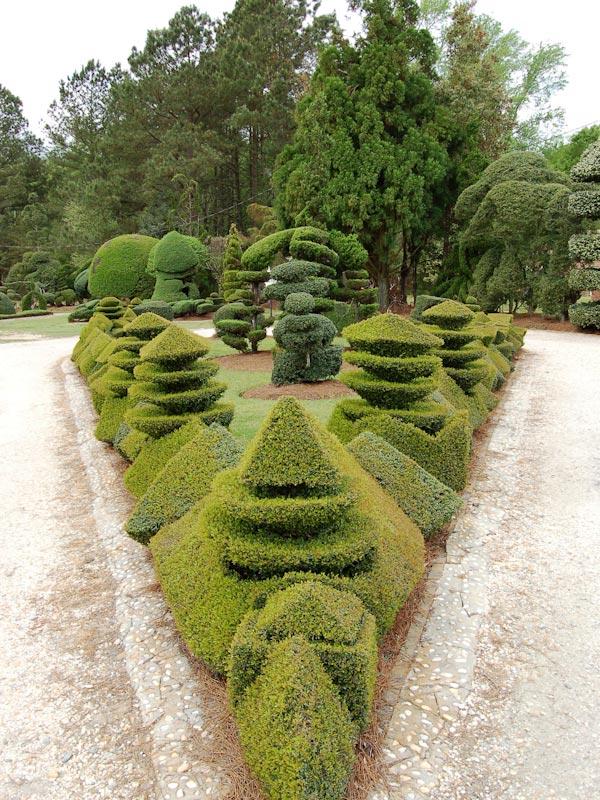 Poda Topiaria. Haciendo arte con las plantas