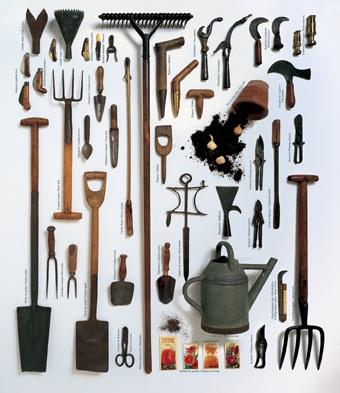 Cuáles son las herramientas más comunes para el cuidado de un jardín II: Rastrillos y Tijeras de podar
