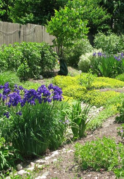 jardin_de_lluvia_2