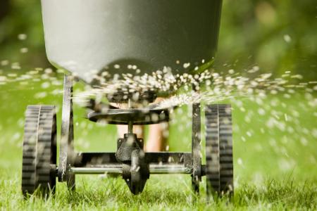 Cuidando el jardín durante el otoño: fertilizantes