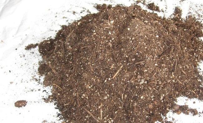 Consejos para reutilizar el sustrato de cultivos anteriores