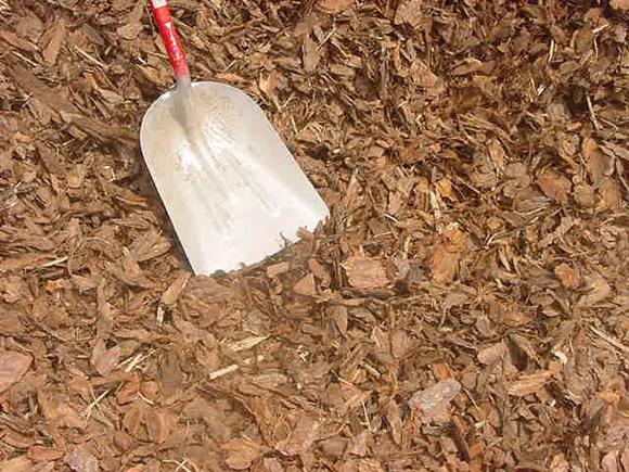 Uso de la corteza de pino como acolchado en jardines y for Factores para seleccionar el terreno para el vivero
