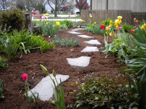 Uso de la corteza de pino como acolchado en jardines y huertos mantemiento jardin flor de - Pinos para jardin ...