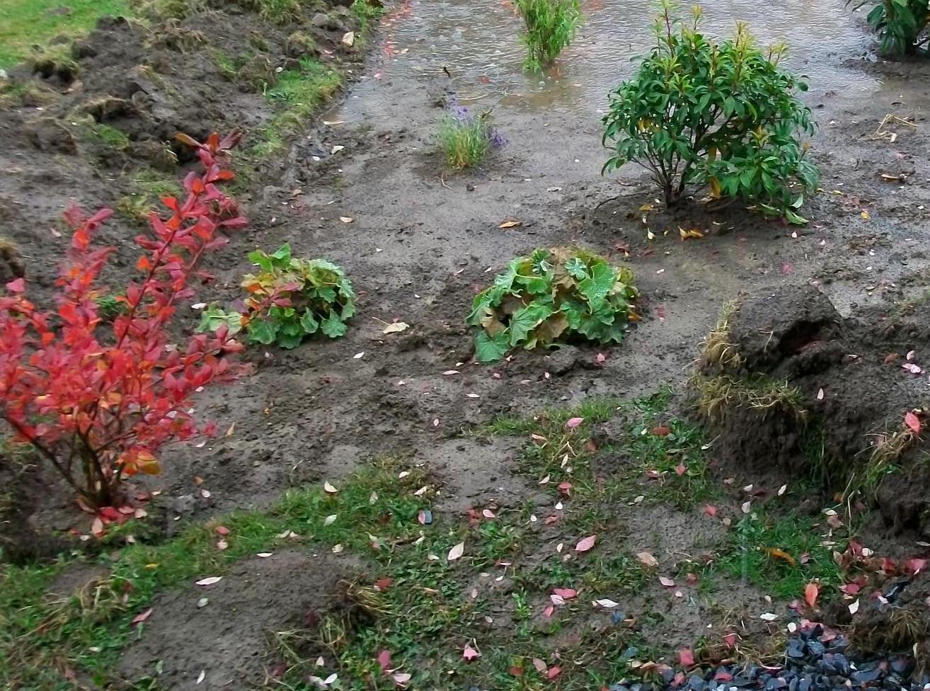 Drenaje del jard n c mo verificar si es el adecuado for Drenaje de jardin