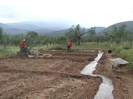 Cuáles son los tipos de riego para agricultura