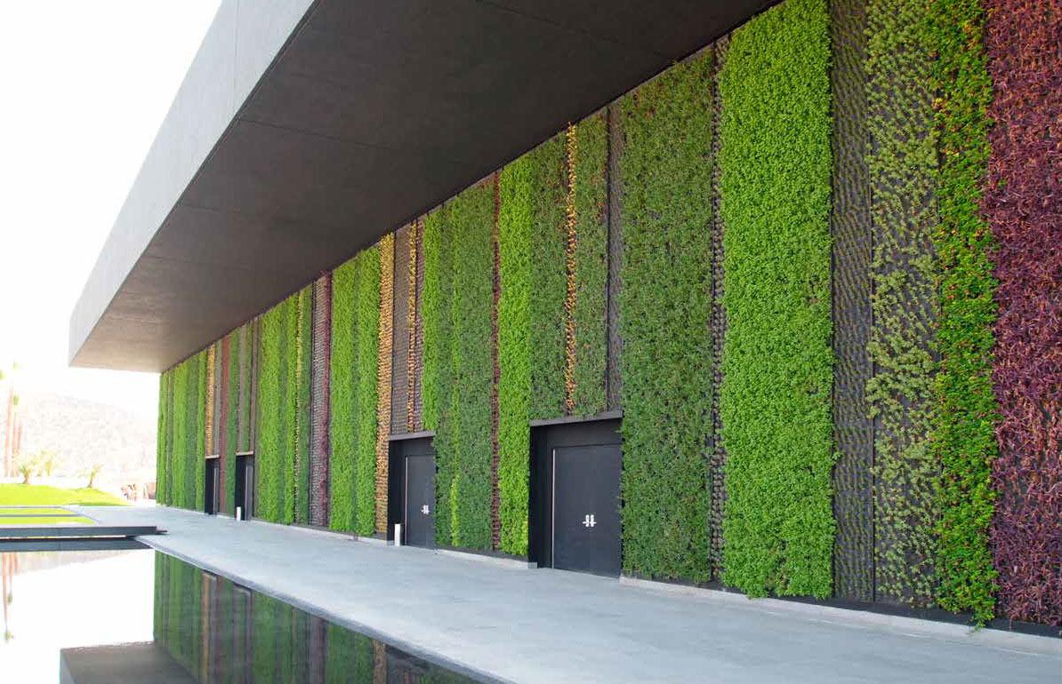 C mo hacer jardines hidrop nicos verticales dise o jardin for Plantas para muros verdes verticales