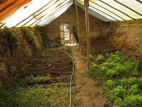 invernadero bajo tierra