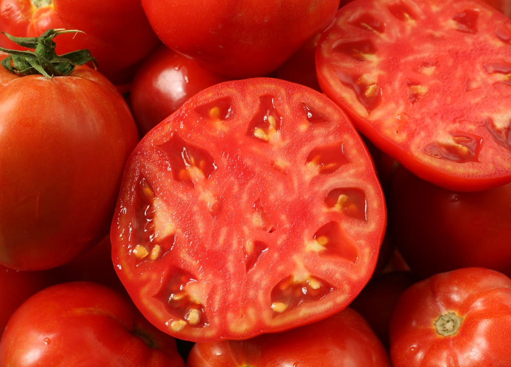 tomate semillas1