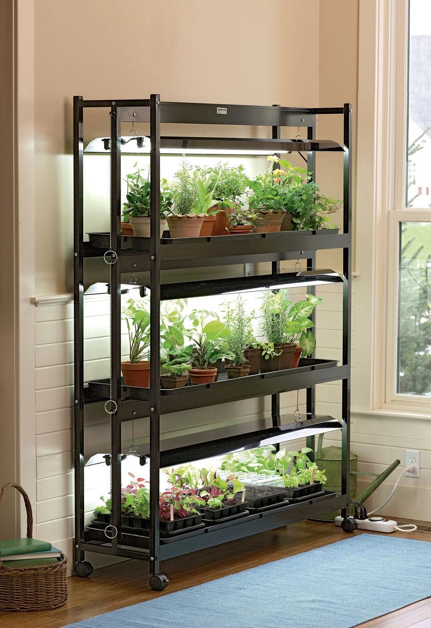 Luces artificiales para plantas de interior: Tipos y criterios de selección