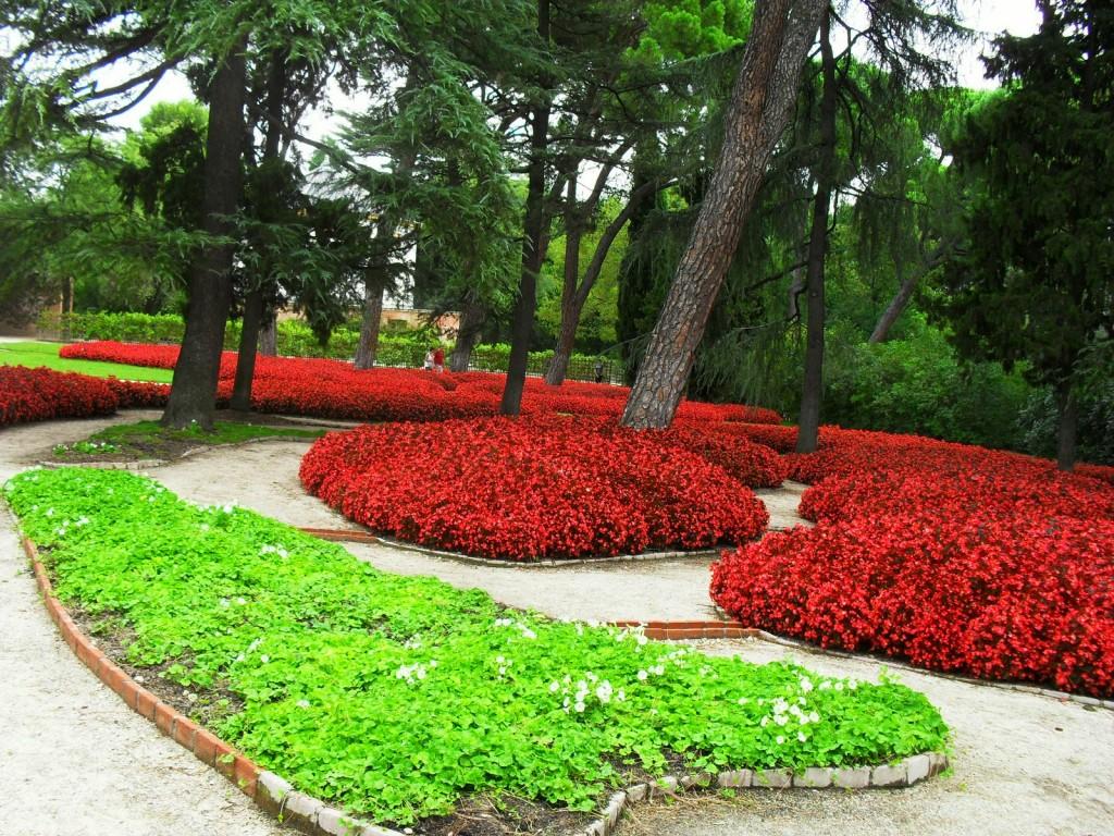 Plantas tapizantes caracter sticas generales y especies m s utilizadas plantas flor de planta - Suelos para jardines pequenos ...