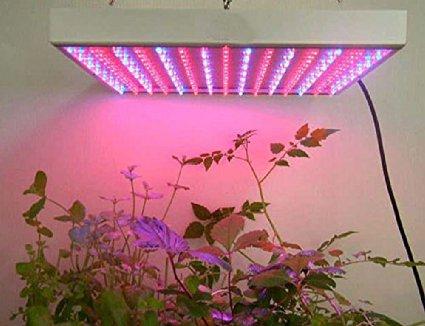 led cultivo1