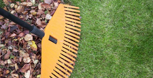 cmo limpiar y mantener el csped sinttico - Limpiar Cesped Artificial
