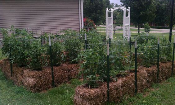 Cómo hacer jardines y huertos con fardos de paja