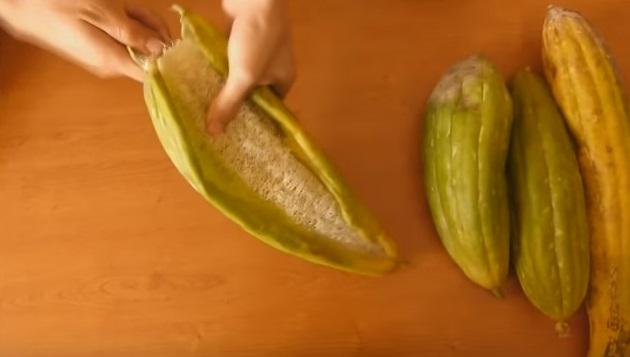esponja vegetal01