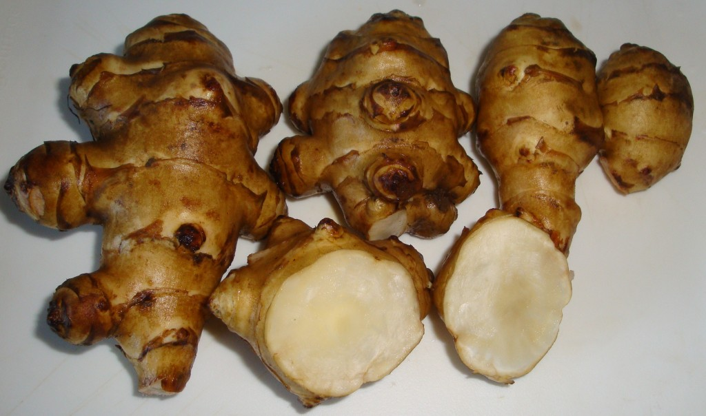 pataca2