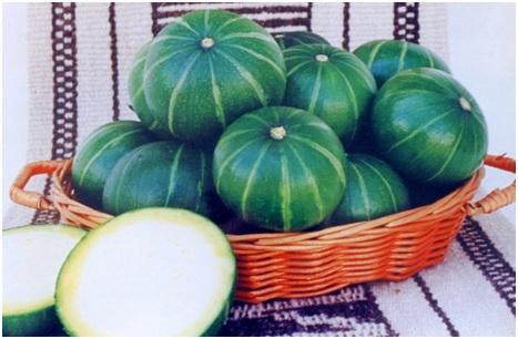 Foto: Frutos del cultivar Veronés INTA (Foto: INTA)