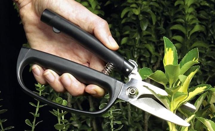 herramientas jardineria1