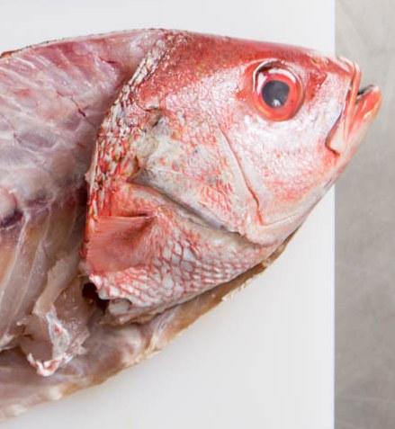 Cómo preparar un fertilizante orgánico a base de restos de pescado