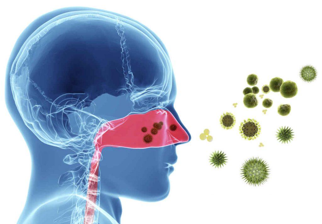 alergia-al-polen