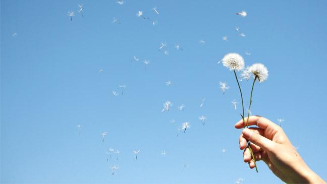 Alergias: Qué es la fiebre del heno