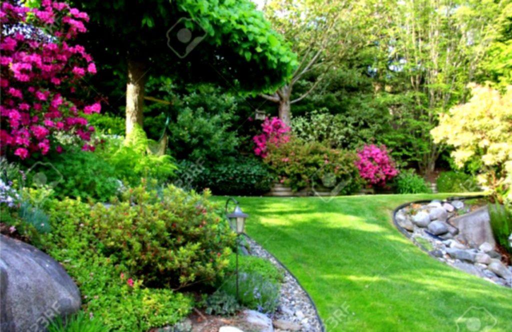 Paisajismo secretos para conseguir un espacio verde m s for Plantas paisajismo