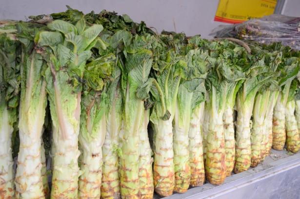 El huerto en casa: Qué es y cómo se cultiva la lechuga china ( Lactuca sativa var. asparagina)