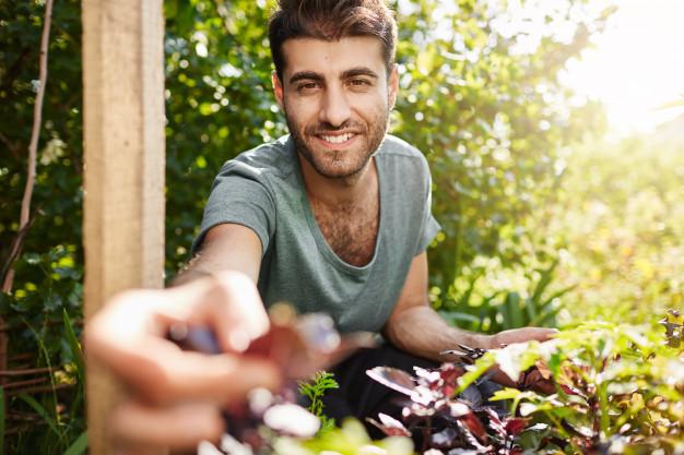 Huerto Urbano: Vegetales para cosechar en menos de 2 meses