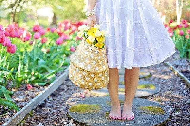 Tulipanes, el significado según su color